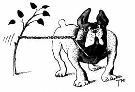 Рисунок С.Тюнина