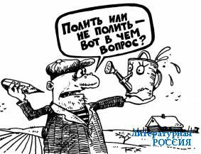Рис. Дмитрия ТРОФИМОВА
