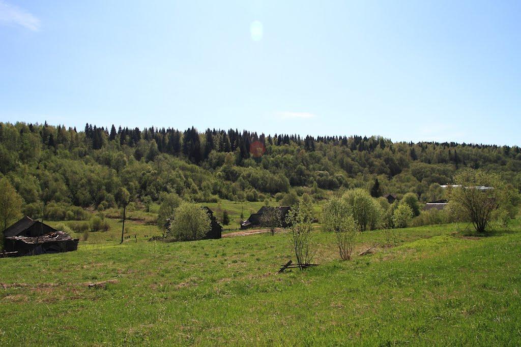 Lukino Veppskiy les